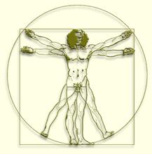 Tinker_Psychotherapy-Da_Vinci_Man